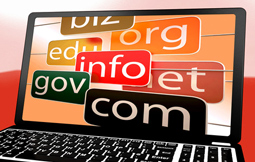 Domain Name Administration